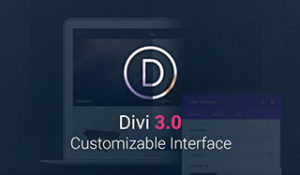 DIVI THEME dropshipping